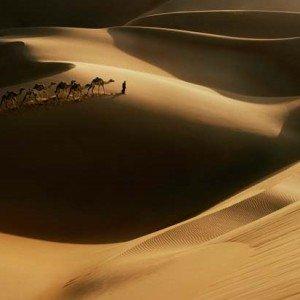 Abou Dhabi Mille et une nuits enfants 22