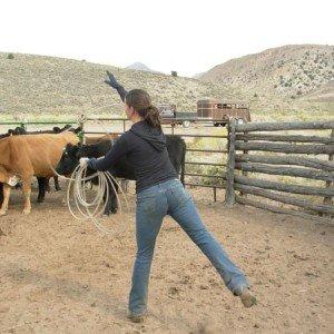 Cow Boy aux États-Unis 10