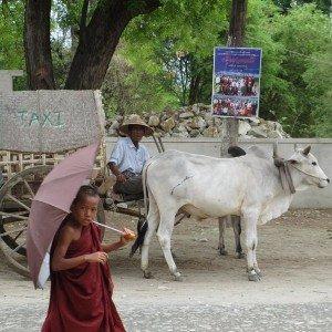 Myanmar extraordinaire avec mariage 12
