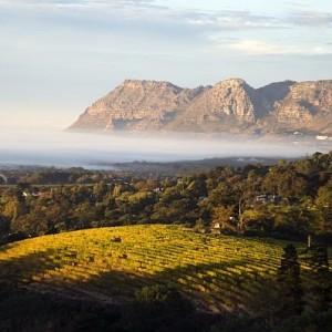 2- Vignobles Afrique du Sud – © 2013 South African Tourism (1)