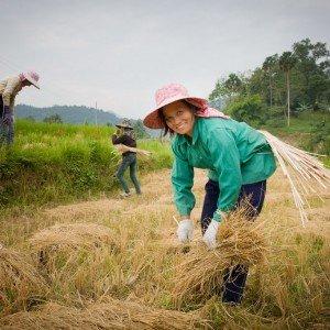 Muang La Resort Laos (59)