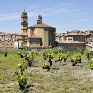Espagne – Rioja Alvesa © Alberto Loyo