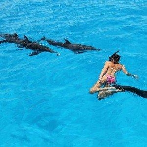 Bahamas-Tourism (17)d – copyright Atmoji – Wildquest
