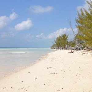 Gold Rock Beach Grand Bahama island Copyright The Islands Of The Bahamas