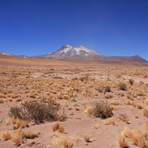 Desert d'Atacama 5©Explora