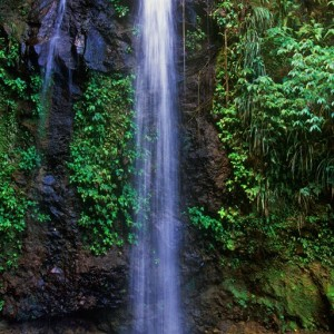 Ste Lucie_Waterfall ©St. Lucia Tourist Board