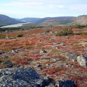Voyage au Canada – Québec – Nunavik 35