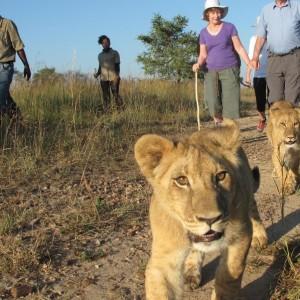 Afrique Australe Extrême 6