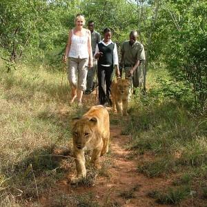 Afrique Australe Extrême 7