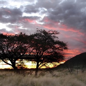 Afrique du sud pour couple 10