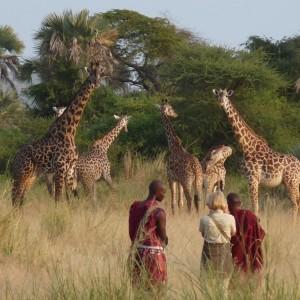 Chem Chem Tarangire Safari Lodge 19