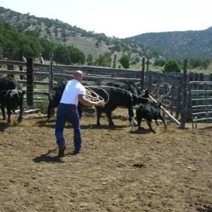Cow Boy aux États-Unis 19