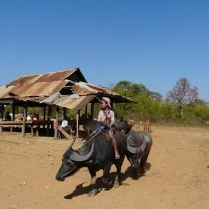 Croisière Privée sur l'Irrawaddy 16