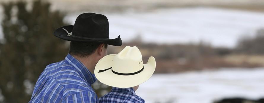 Do you speak cow-boy?