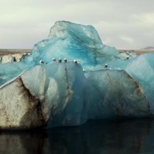 Expériences arctiques Laponie et archipel des îles du Svalbard 21