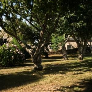 Ile de Beniguet 16