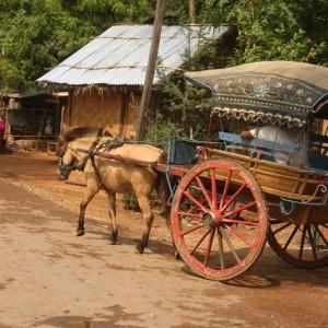 Myanmar extraordinaire avec mariage 8