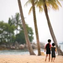 l'île aux enfants