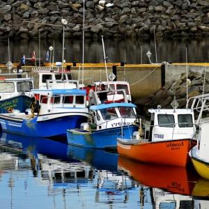 Bateaux colorés à la marina de l'Anse-à-Beaufils © Le Québec maritime-Marc Loiselle