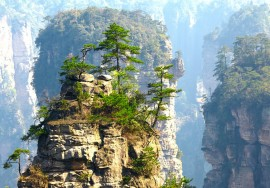 CHINE – Zhangjiajie national park – Copyright  silver-john