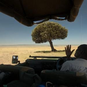 Mara Toto_Masai Mara_Kenya (1)