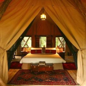 Mara Toto_Masai Mara_Kenya (9)