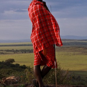 Masai Mara KENYA (4)
