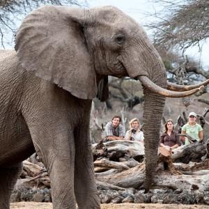 OL DONYO LODGE KENYA (8)