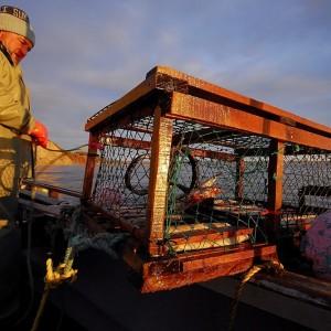 Pêcheur de homard et casier à Percé © Le Québec maritime-Marc Loiselle