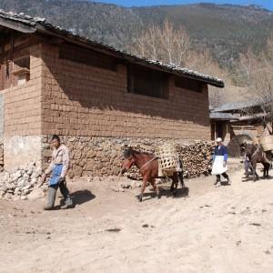 Wenhai Village 2