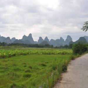Yangshuo Vespa