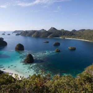 croisière îles de la sonde et Papouasie INDONESIE (31)