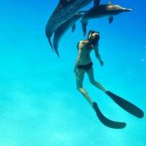 Toi, moi et les dauphins